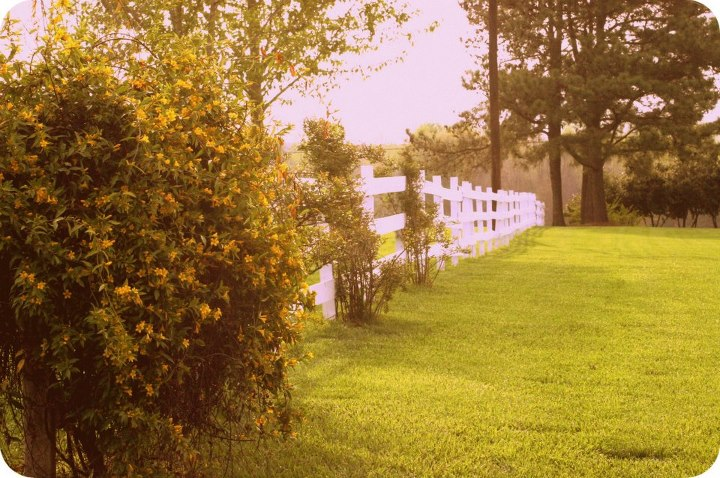 farm-wedding-venue-charlotte