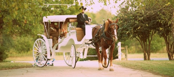 horse-drawn-carriage-wedding
